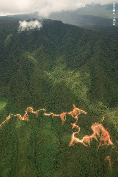 REGION ORIENTAL O AMAZONICA